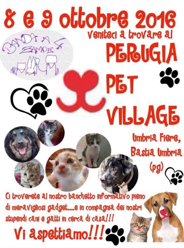 pet-village