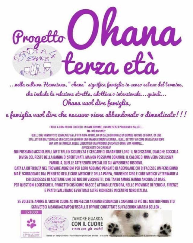 ohana11